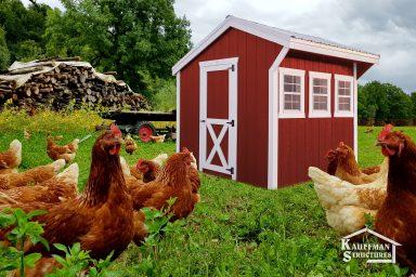 small chicken coop hen house in iowa