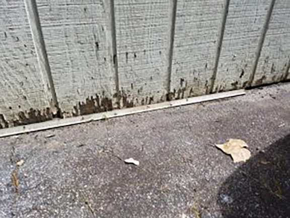 avoid cheap siding to get the best shed for the money 300x225